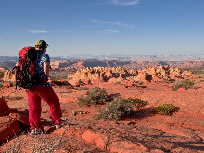 小山南土狼的远足者 免版税库存图片