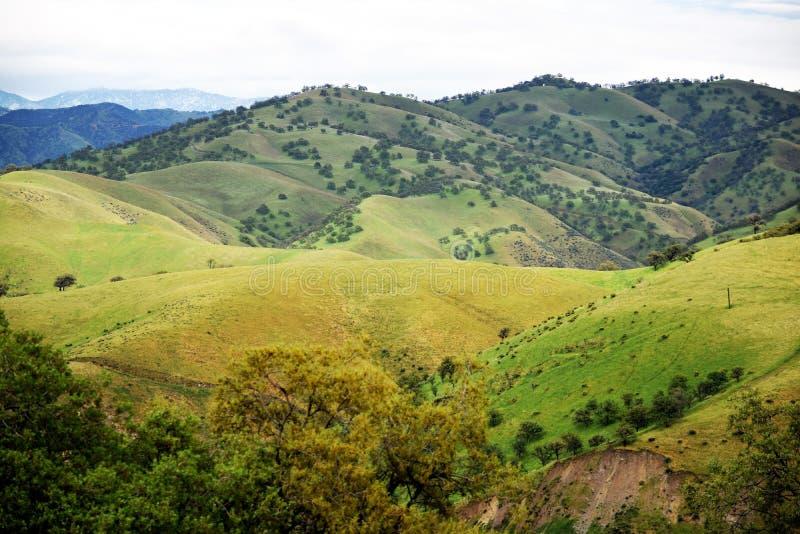 小山和沟壑 免版税库存照片