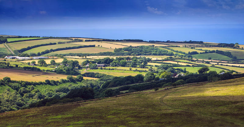 小山和牧场地在Exmoor 库存照片
