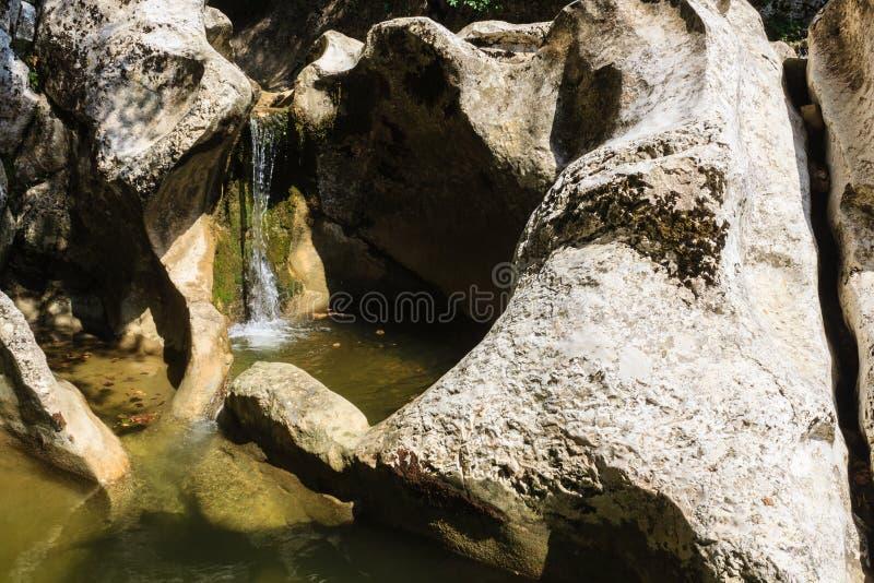 小山河瀑布和花梢形成了大灰色石头 免版税库存照片