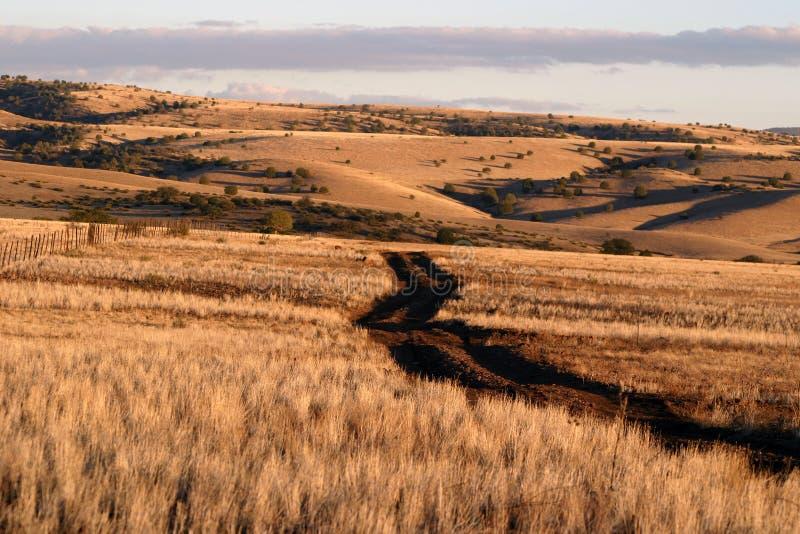 Download 小山滚 库存图片. 图片 包括有 种植者, 横向, 吃草, 本质, 日落, 小山, 金黄, 野营, 户外, 牧场地 - 62299