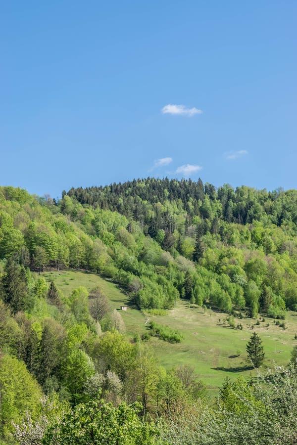 小山的一个偏僻的木谷仓 免版税库存图片
