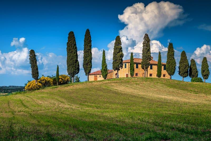 小山的典型的托斯卡纳石房子在皮恩扎,意大利附近 库存图片