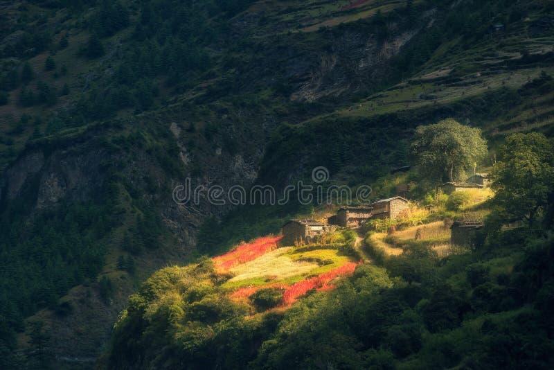 小山的惊人的小村庄由光束点燃了在sunris 库存照片