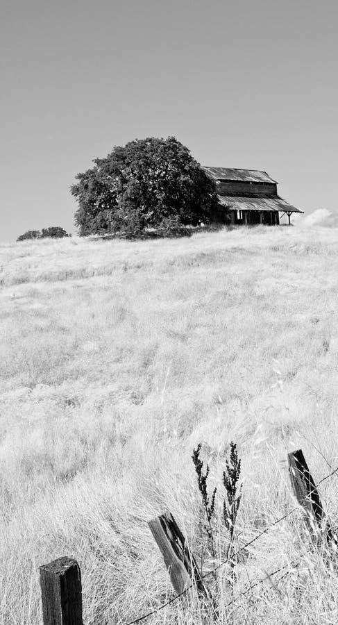 小山的老谷仓 图库摄影