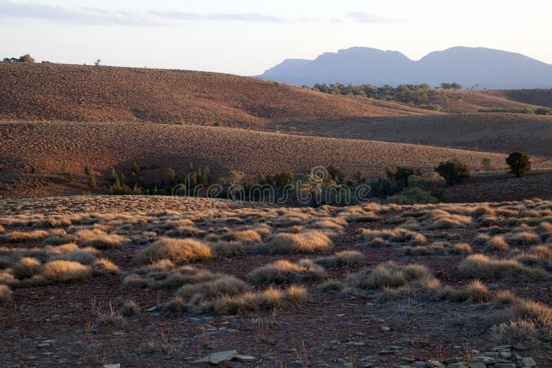 小山看法与草丛的在黄昏 库存照片