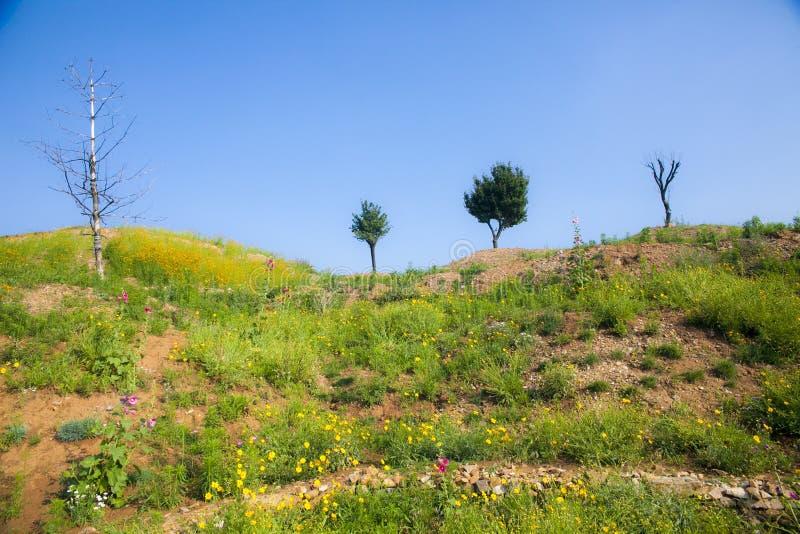 小山顶庭院喜欢一个童话世界 图库摄影