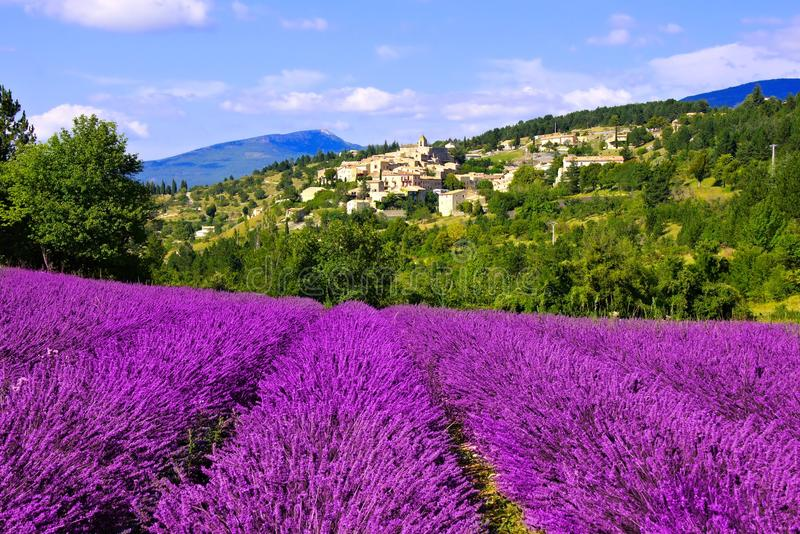 小山顶村庄在普罗旺斯,法国用美丽的淡紫色 免版税图库摄影