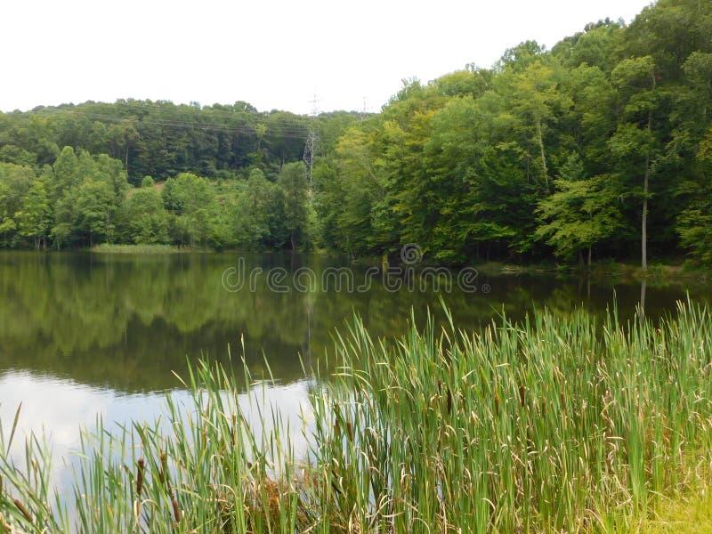 小山顶的湖 图库摄影