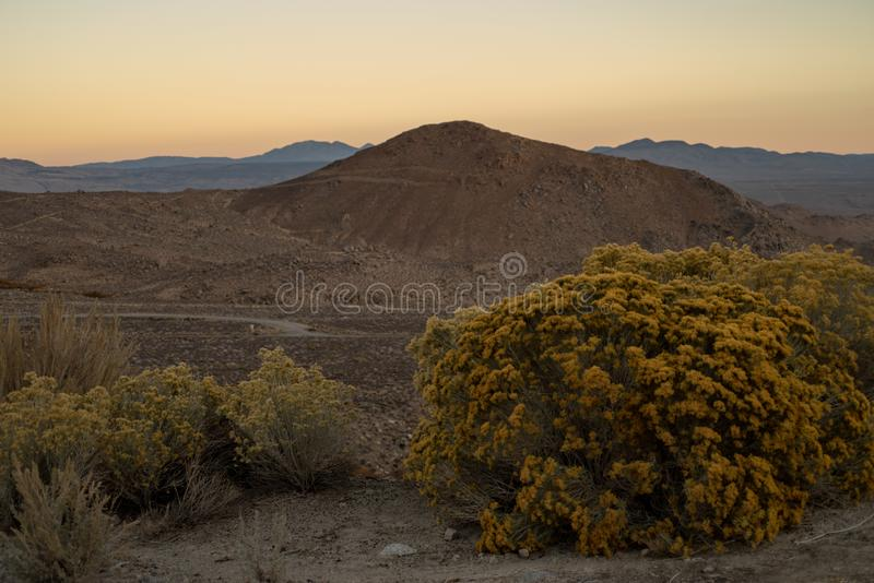 小山,山,沙漠谷,野花内华达山东部山,C早晨视图  库存照片