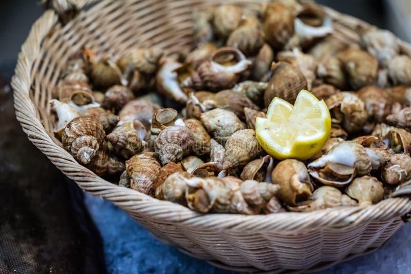 小峨螺或法国bulots甲壳纲显示在篮子 库存照片