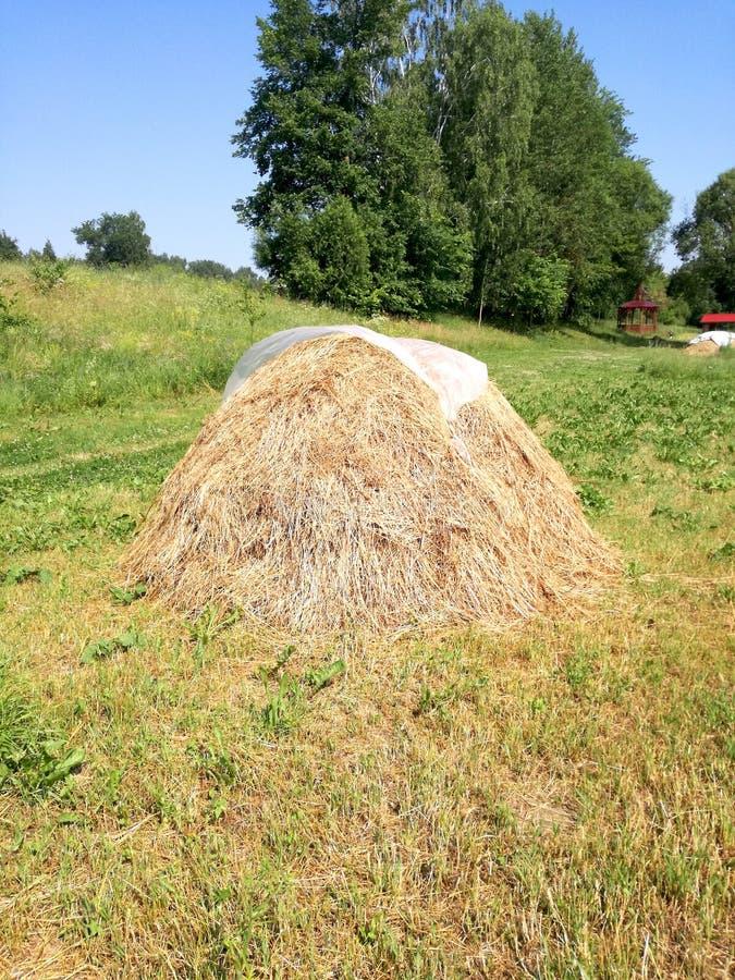 小干草堆在洪泛区 库存图片