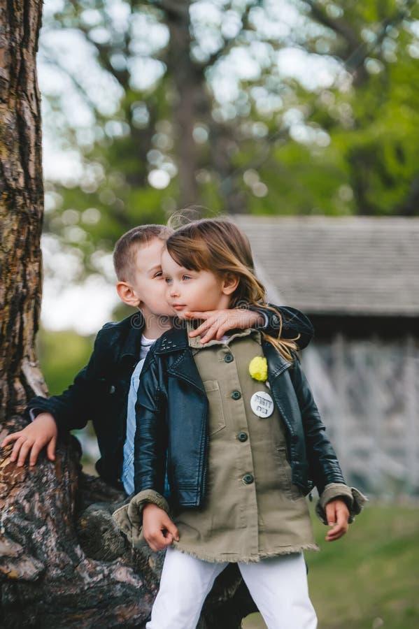 小弟妹站在树干旁拥抱 库存图片