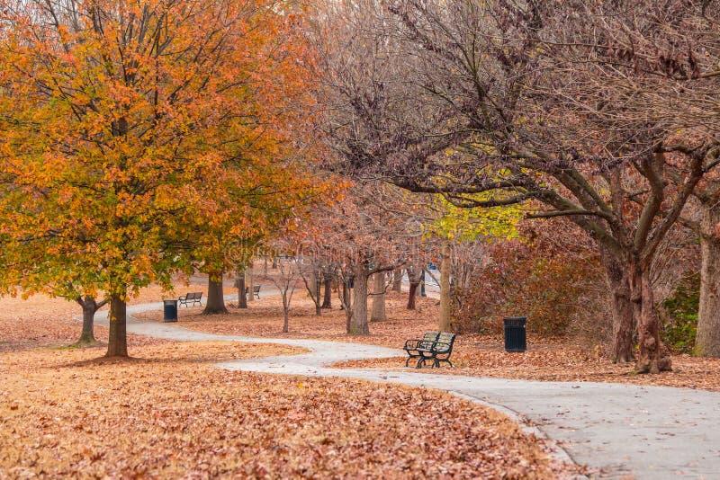 小径在秋天山麓公园,亚特兰大,美国 免版税库存照片