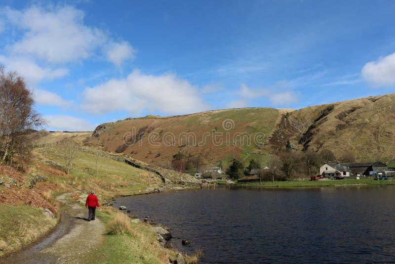 小径的夫人Watendlath塔恩省, Cumbria 库存图片