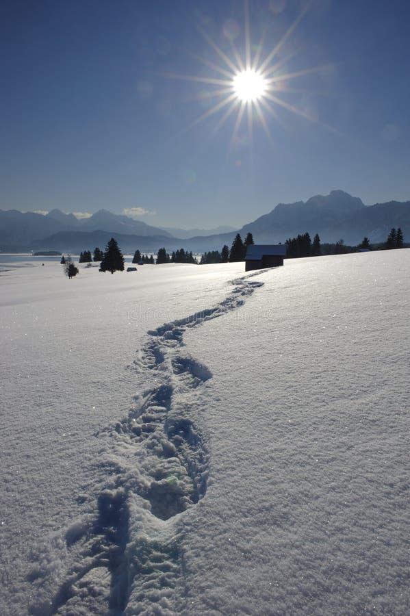 小径雪 库存图片