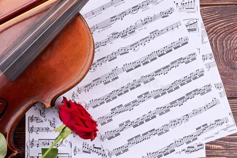 小提琴、玫瑰和音乐笔记 库存图片