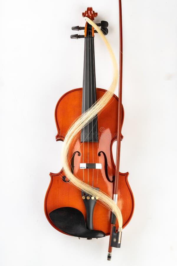 小提琴和弓在轻的背景 一个新的被串起的乐器 免版税图库摄影