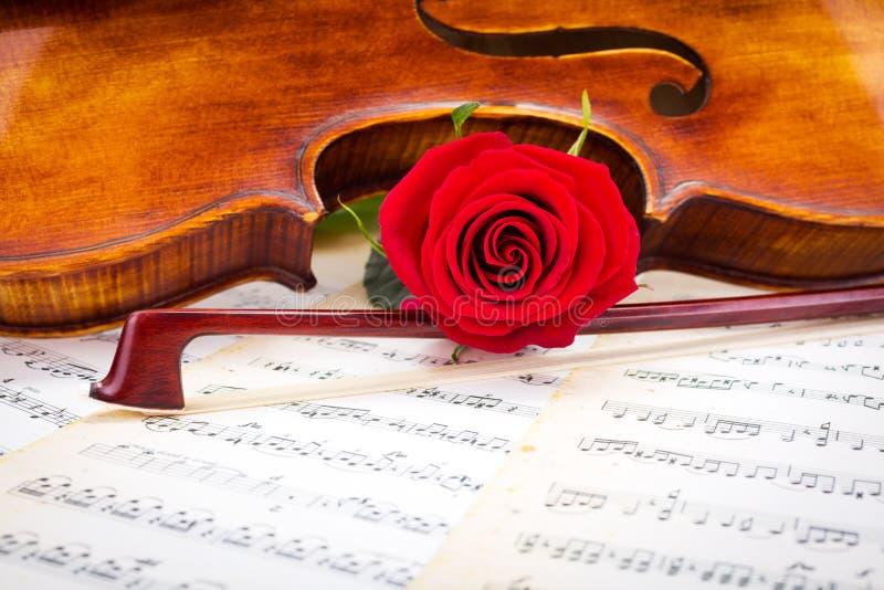 小提琴细节、红色玫瑰和弓在板料 库存图片