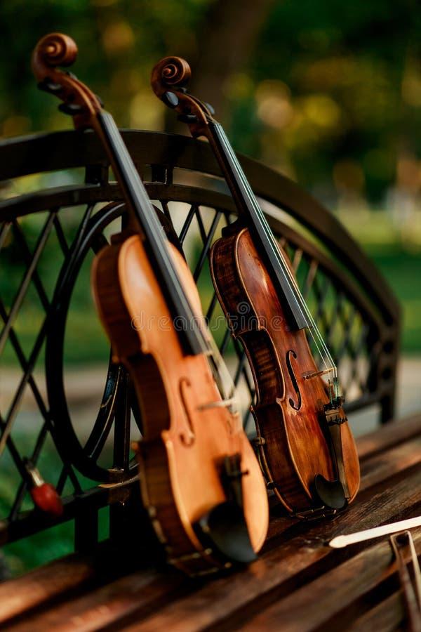 小提琴乐队的乐器 小提琴在长凳的公园 免版税库存图片