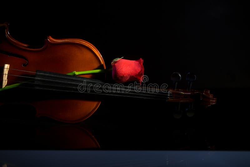 小提琴和上升了,小提琴乐队乐器 免版税库存照片