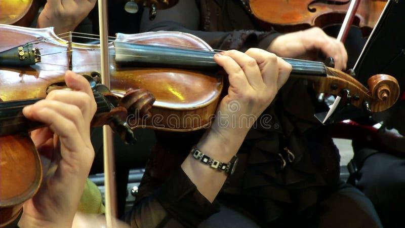小提琴和手 股票录像