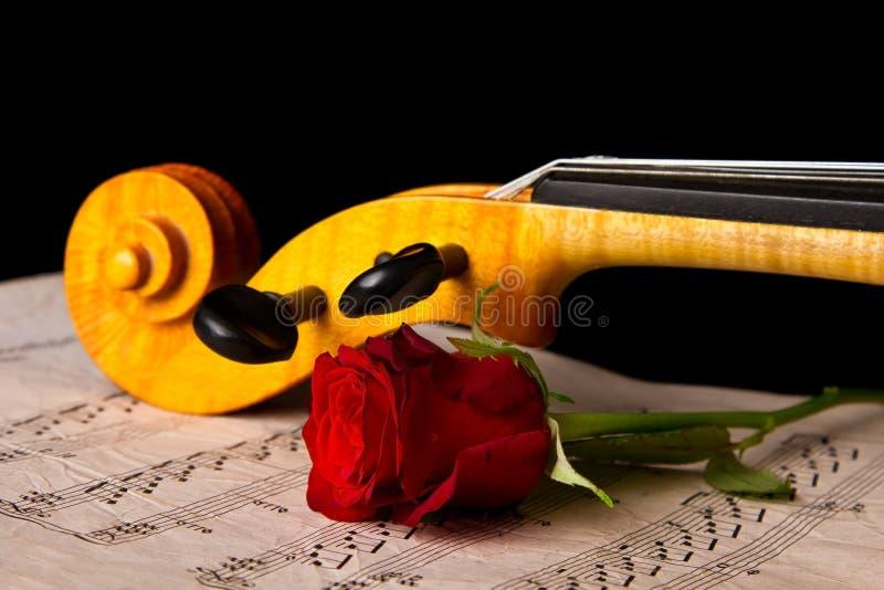 小提琴活页乐谱和上升了 库存照片