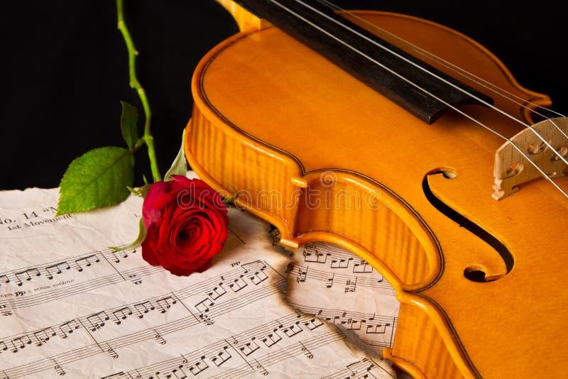 小提琴活页乐谱和上升了 免版税库存照片