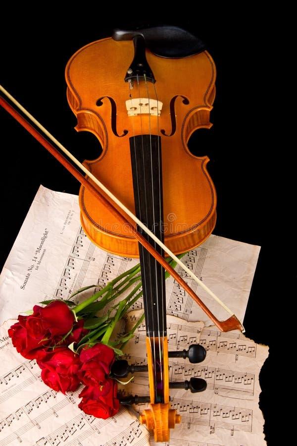 小提琴活页乐谱和玫瑰色特写镜头静物画 库存图片