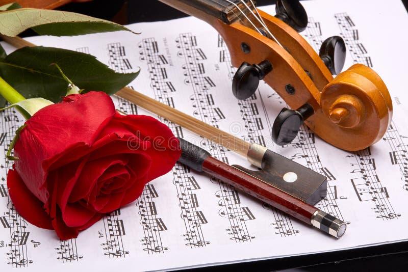小提琴,玫瑰色和笔记 图库摄影