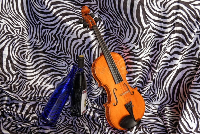 小提琴Elisha 免版税图库摄影