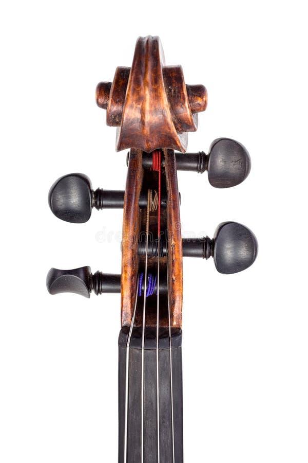 小提琴pegbox和钉顶视图  免版税库存图片