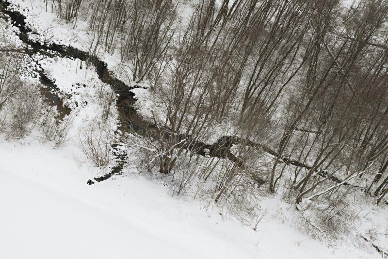 小河冬天 免版税库存图片
