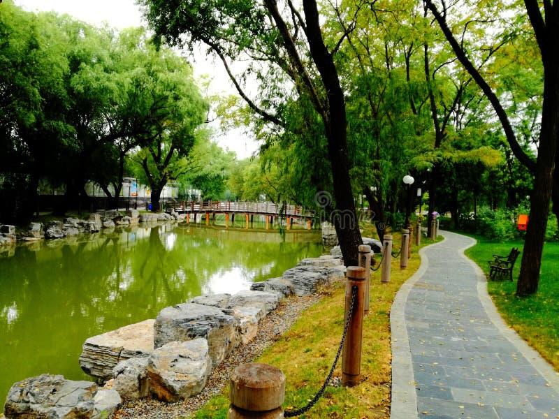 小河和沿途有树的道路在luhe中学 免版税图库摄影