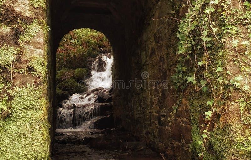 小河和隧道, Glendine,爱尔兰 库存图片