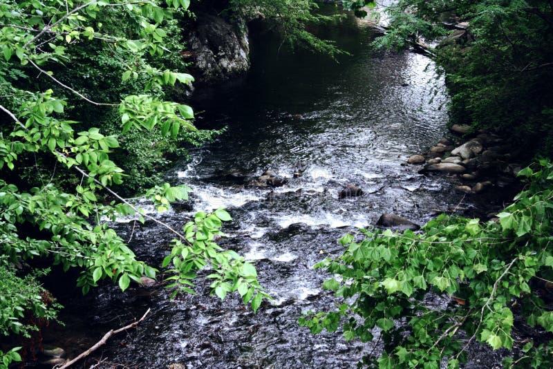 小河在Gatlinburg 库存图片