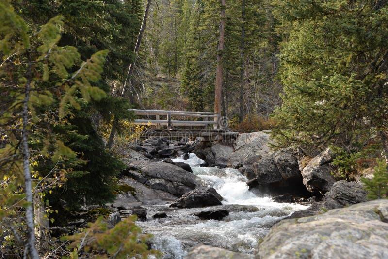 小河来快速地咆哮在山下和愤怒及早在春天 库存照片