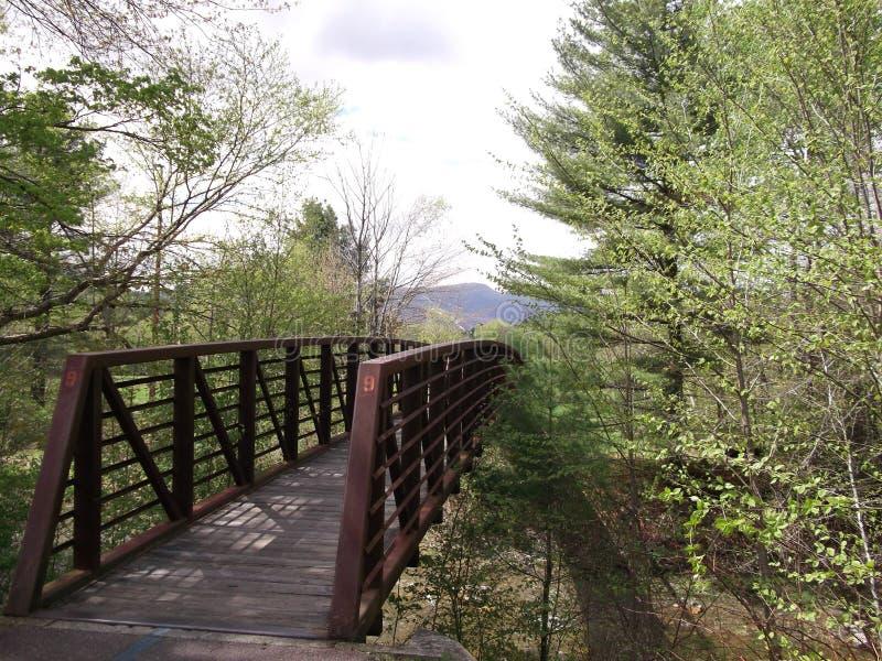 小河桥梁4 图库摄影