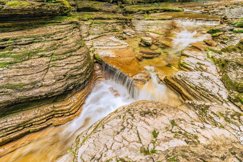 Download 小河用在深峡谷的纯净的水 库存照片. 图片 包括有 庄严, 工厂, 早晨, 狭窄, 岩石, 洞穴, 室外 - 72373892