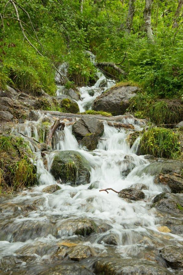 小河的小瀑布 库存照片