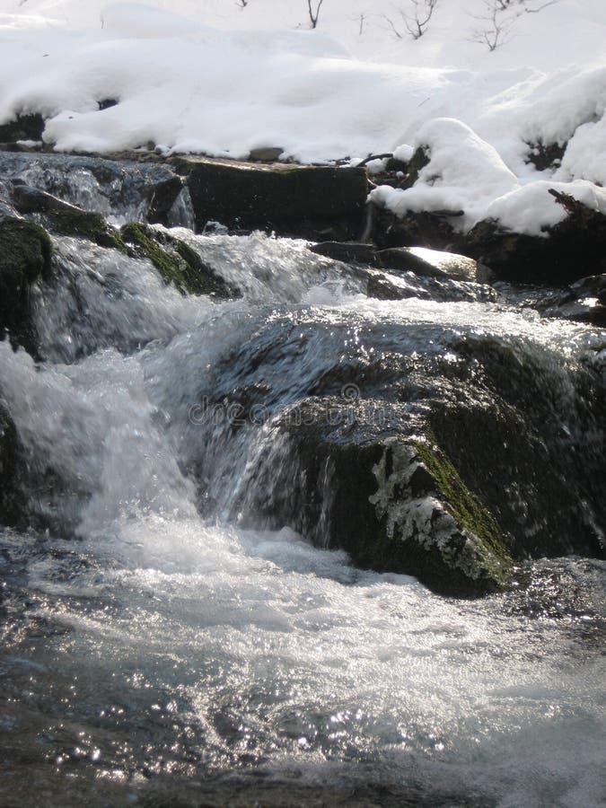 小河:在喀尔巴阡山脉的春天 免版税库存图片
