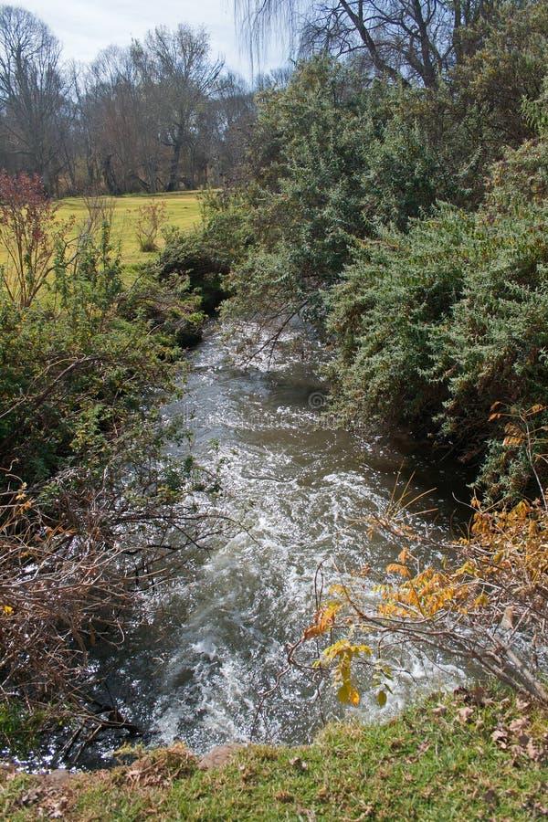 小河以灌木突出物 库存图片