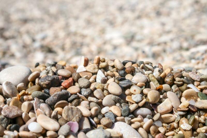 小海小卵石和壳反对被弄脏的背景 免版税库存图片