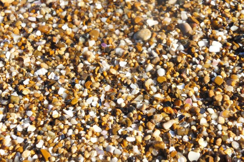 小海小卵石沙子背景 免版税库存图片