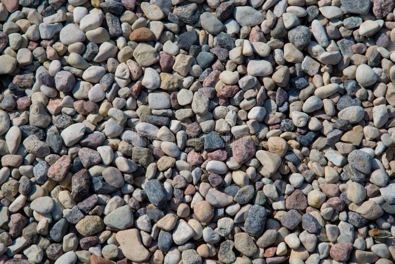 小海石头,石渣背景 从灰色海小卵石的自然背景 免版税库存照片