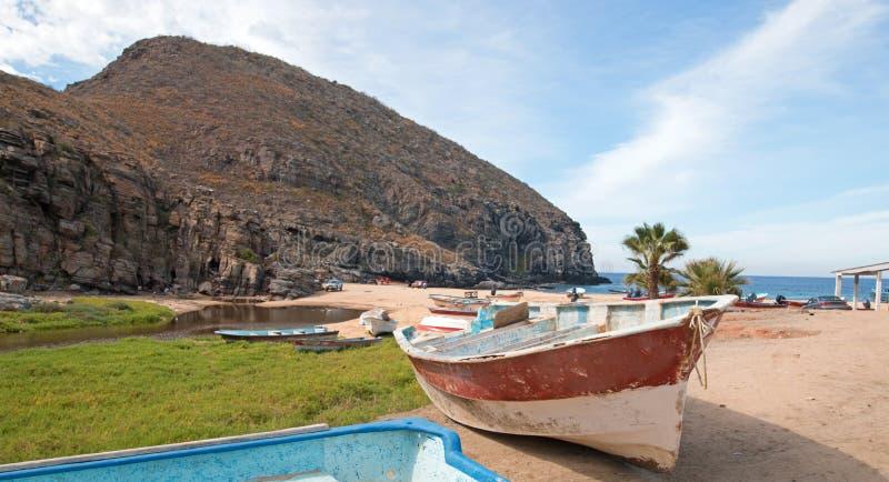 小渔船/庞加蓬塔罗伯斯海滩的在下加利福尼亚州墨西哥海岸  免版税图库摄影