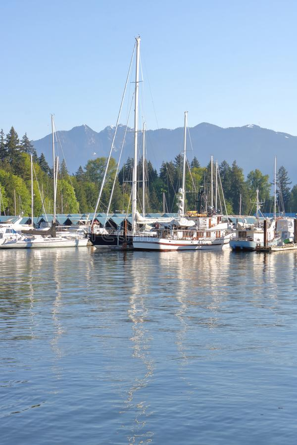 小游艇船坞垂直的看法  免版税库存图片