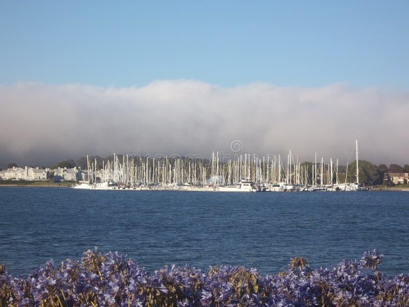 小游艇船坞方式游艇港口 库存图片