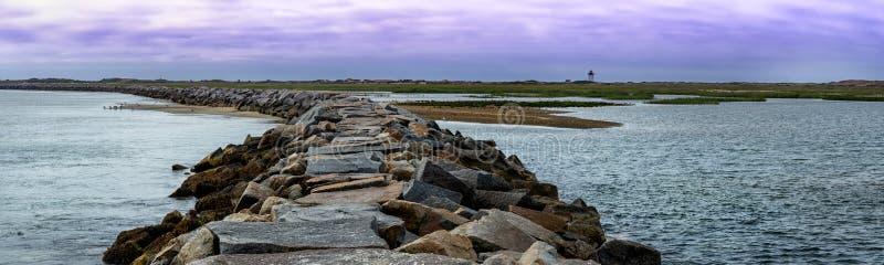 小游艇船坞防堤鸟在Provincetown, MA,美国 免版税库存图片