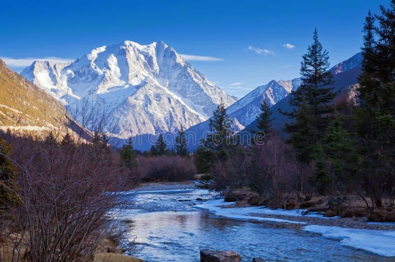 小溪和雪山 库存照片